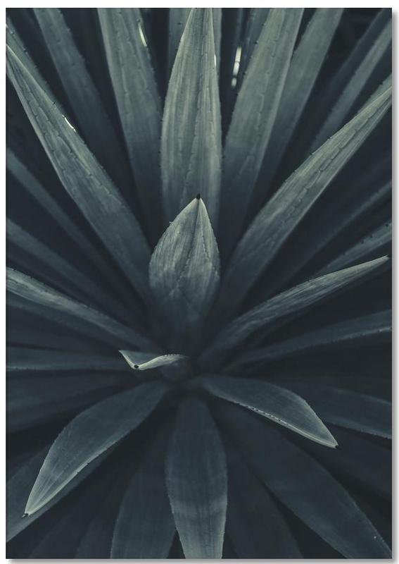Palms 2397 Notizblock