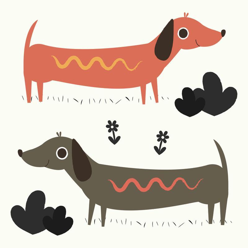Wiener Dogs Aluminium Print