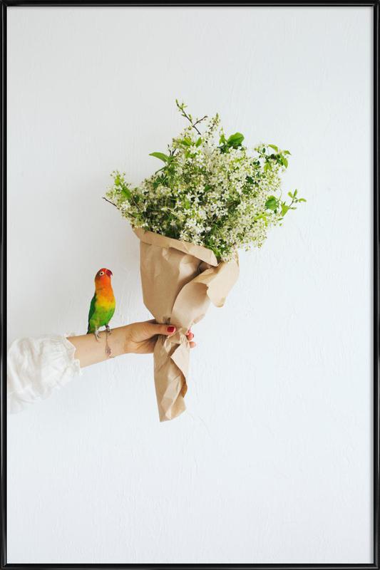 Parrot And A Girl -Bild mit Kunststoffrahmen