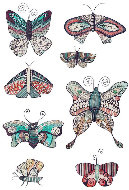 Schmetterling Alu Dibond Druck