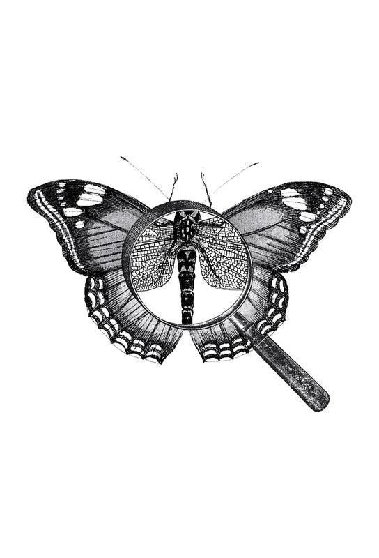 Loeping Good (Butterfly) alu dibond