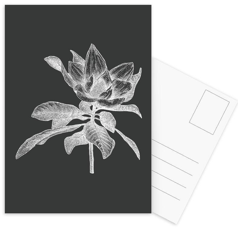 Magnolia - White on Grey Postcard Set