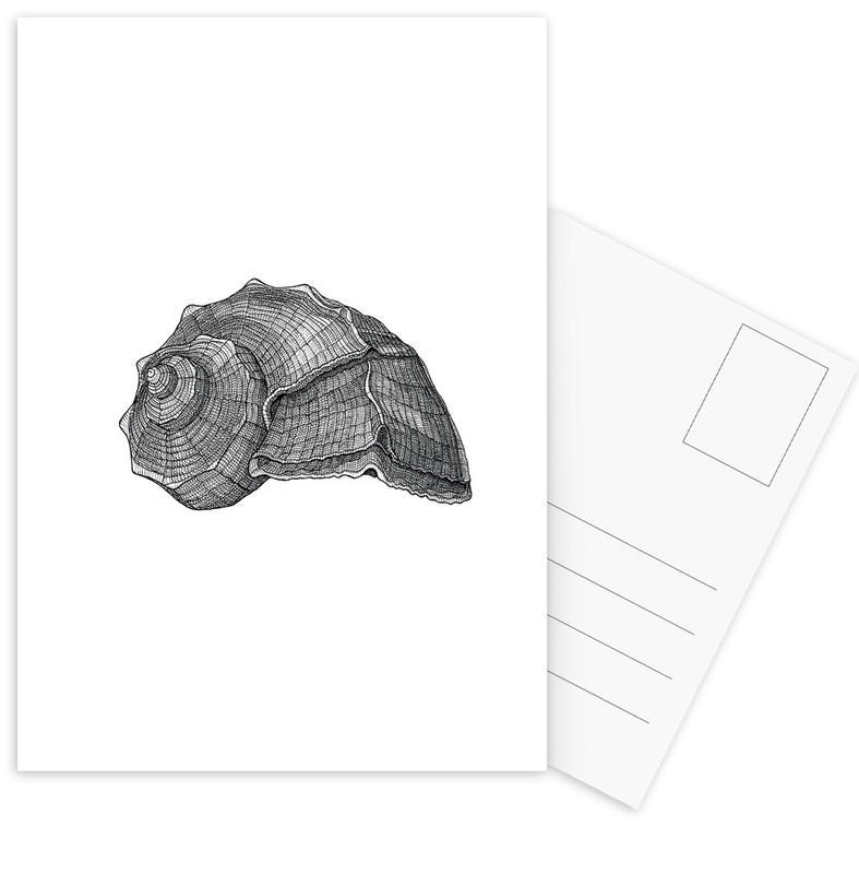 Seashell Postcard Set