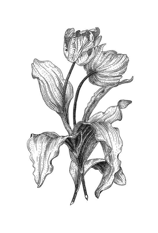 Tulips Acrylglasbild | Dekoration > Bilder und Rahmen > Bilder | Mehrfarbig | Aluminium