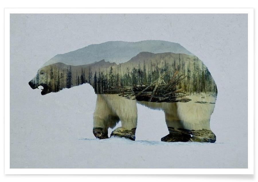 The Arctic Polar Bear affiche