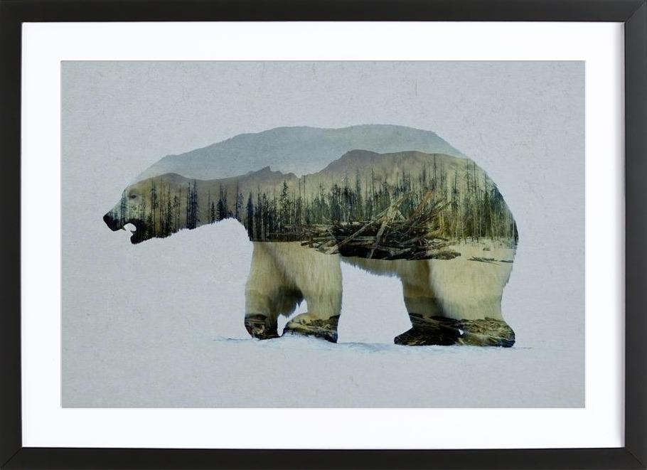 The Arctic Polar Bear Framed Print