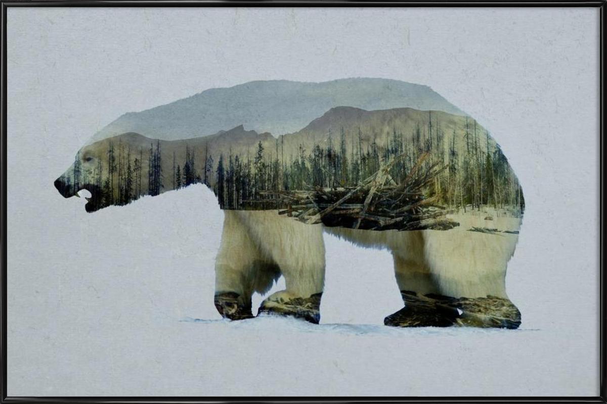 The Arctic Polar Bear -Bild mit Kunststoffrahmen