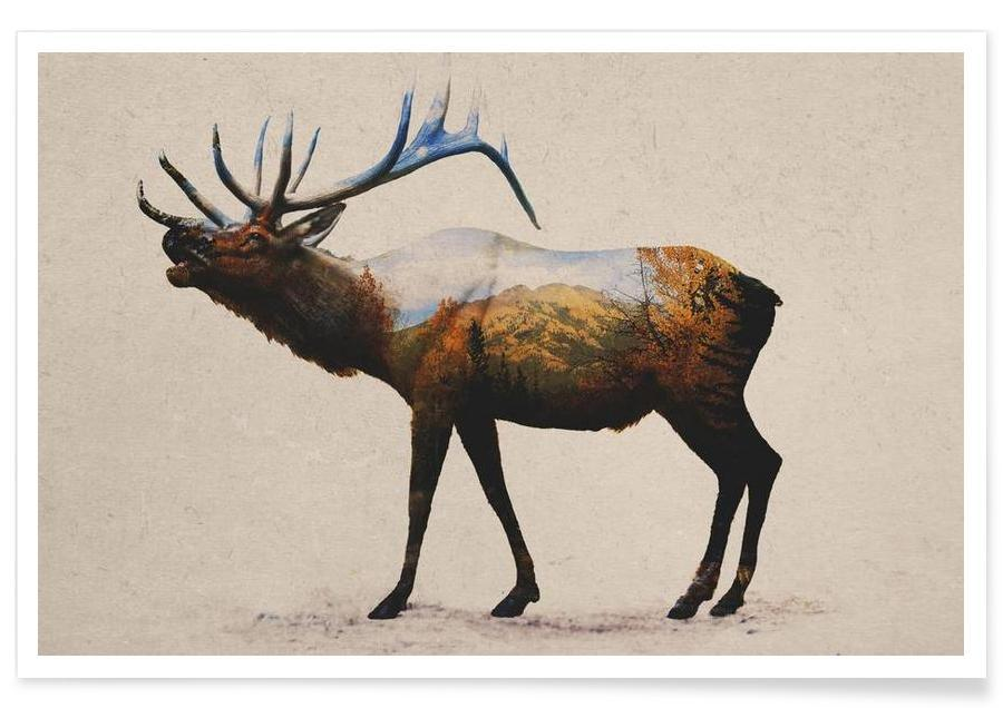 The Rocky Mountain Elk poster