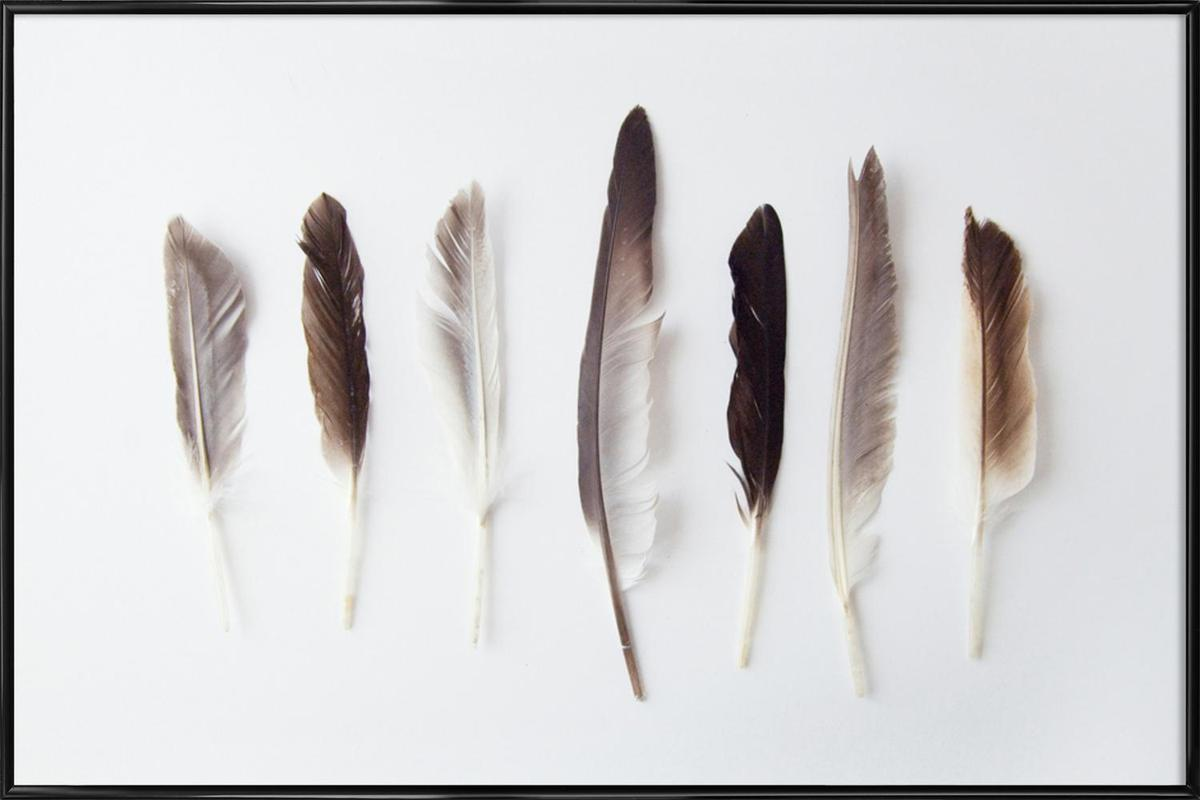 Autumn Feathers Framed Poster