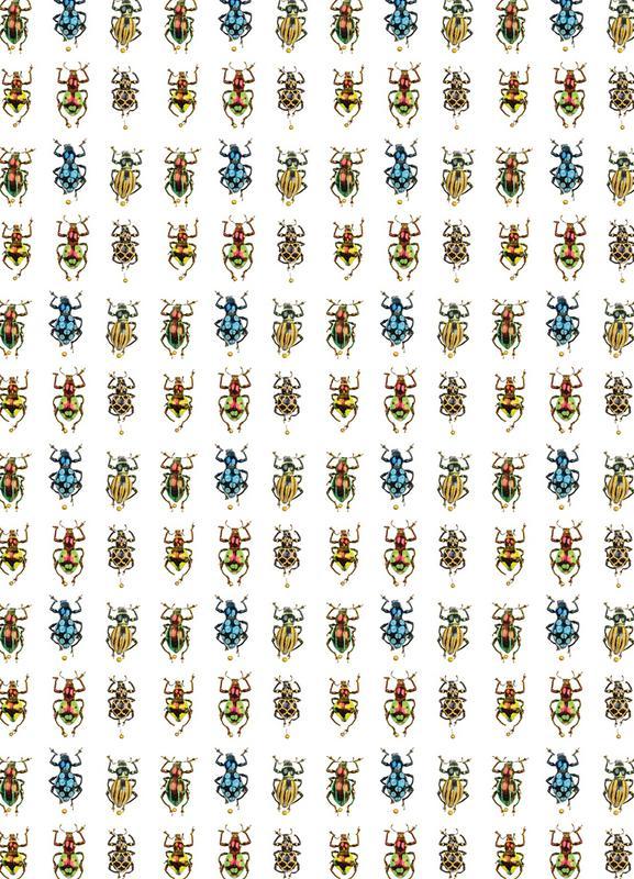 Tiny Beetles Leinwandbild | Dekoration > Bilder und Rahmen > Bilder | Mehrfarbig | Holz
