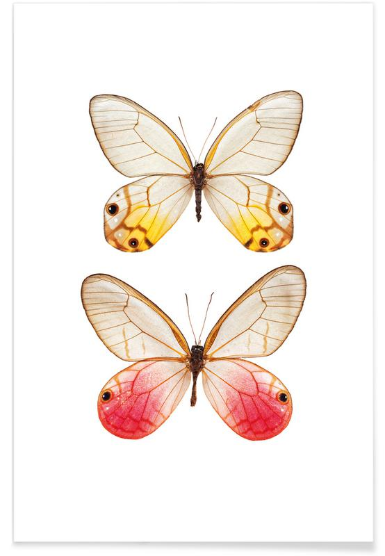 Butterfly 4 Poster