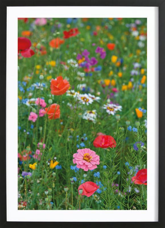 Wild Flowers Field 1 ingelijste print