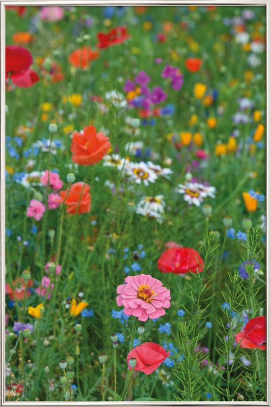 Wild Flowers Field 1 poster in aluminium lijst