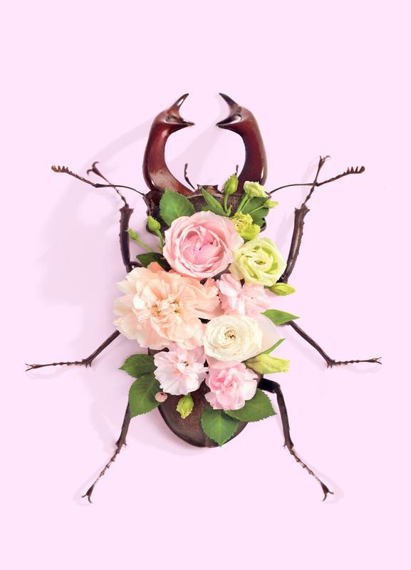 Floral Beetle Leinwandbild | Dekoration > Bilder und Rahmen > Bilder | Mehrfarbig | Holz