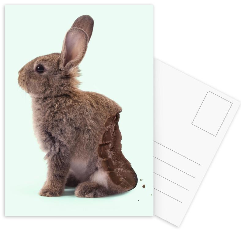 Chocolate Rabbit Postcard Set