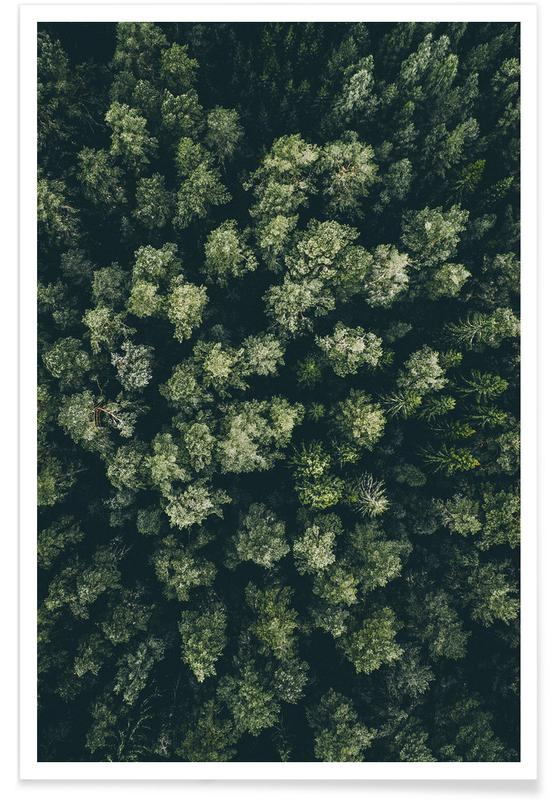 Forest Aerial Photograph poster