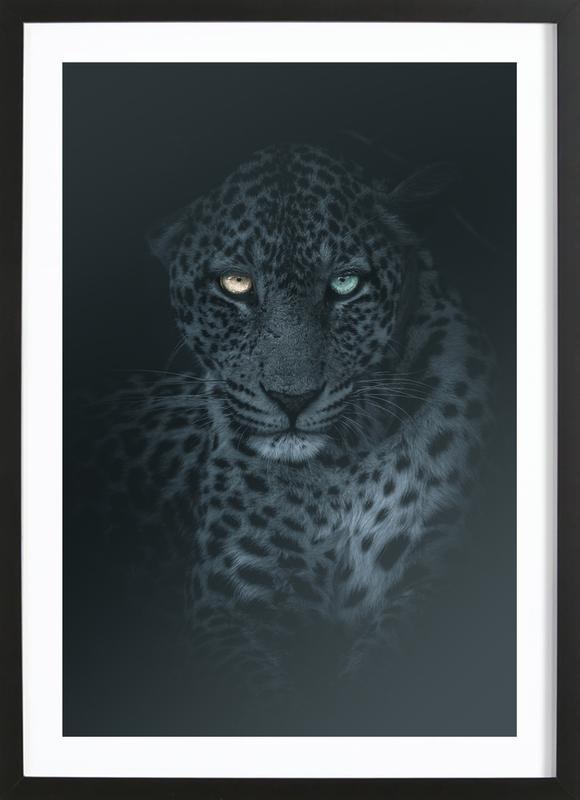 Eyes in the Night Framed Print