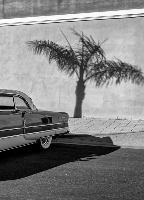 Packard Minimal toile