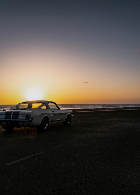 Sunset Mustang toile