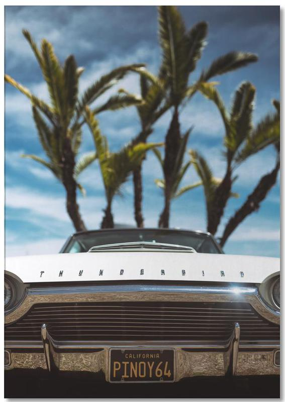 Tropic Thunderbird Notepad