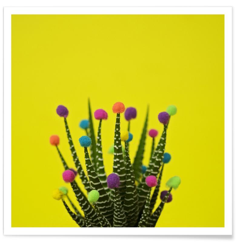 Haworthia in Bloom Premium Poster | Dekoration > Bilder und Rahmen > Poster