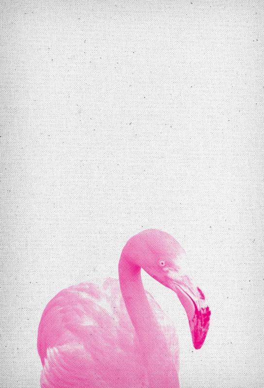 Flamingo 03 Acrylic Print