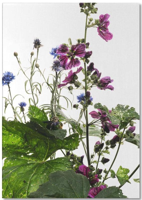 Flora - Wilde Malve -Notizblock