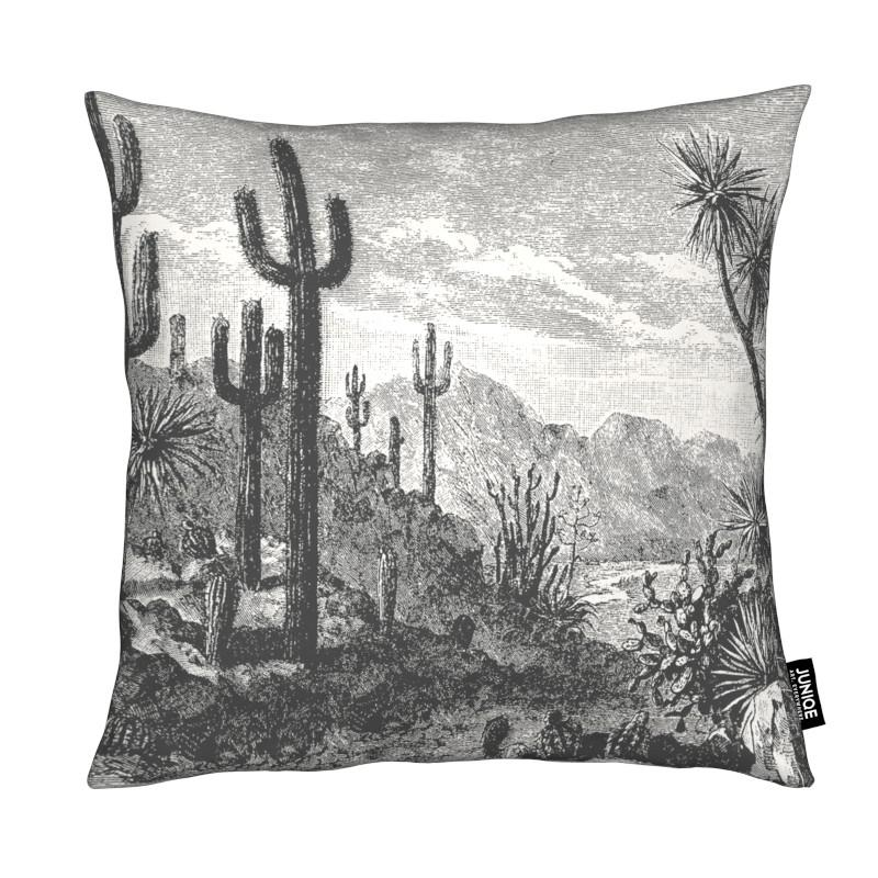 Cacti in Mountains