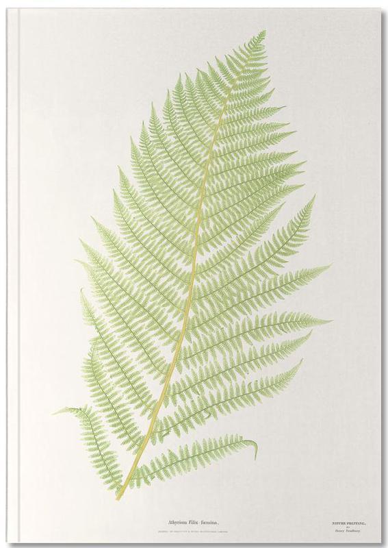 Ferns 2 Notebook