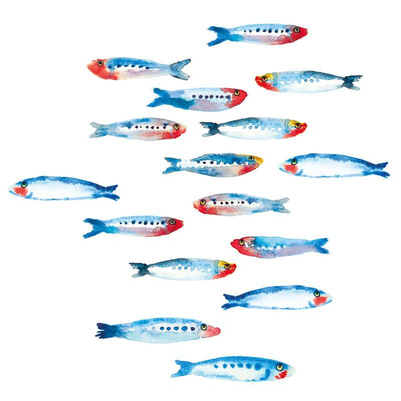 Sardines -Leinwandbild