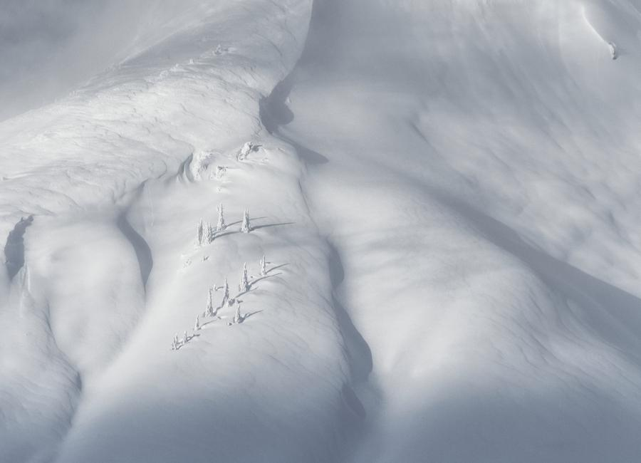 Planet Snow 3 Canvas Print