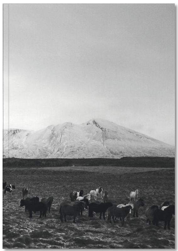 The herd Notebook