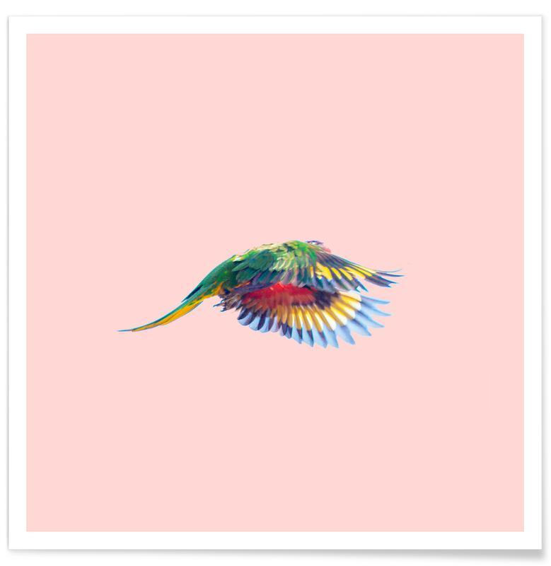 Pink Parrot Premium Poster | Dekoration > Bilder und Rahmen > Poster | Mehrfarbig