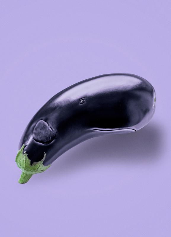 Eggplant Whale -Leinwandbild