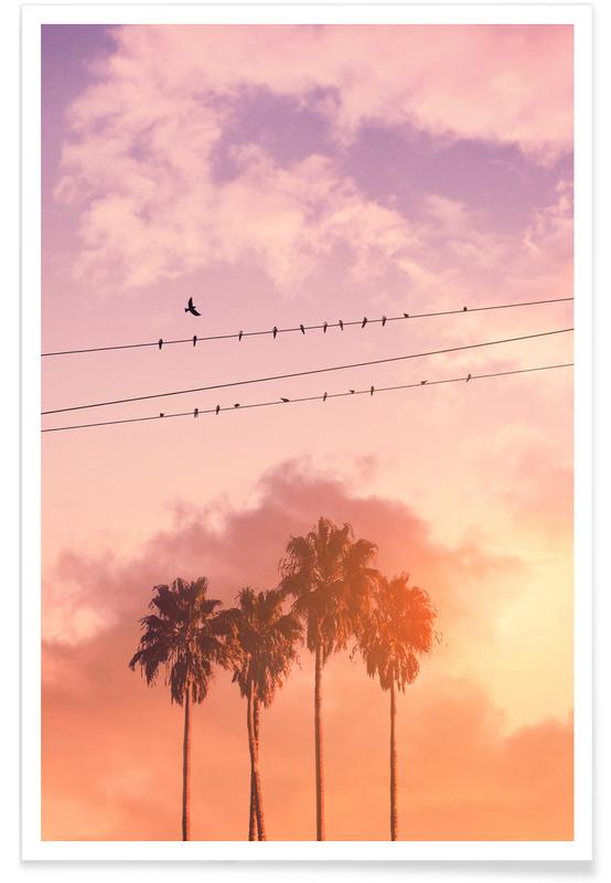 Birds on a Wire -Poster