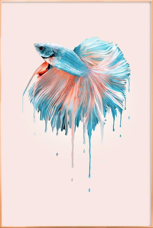 Melting Fish -Poster im Alurahmen