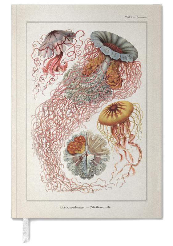 Tafel 8 - Haeckel Personal Planner