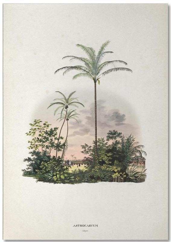 Astrocaryum Vulgare - Martius -Notizblock