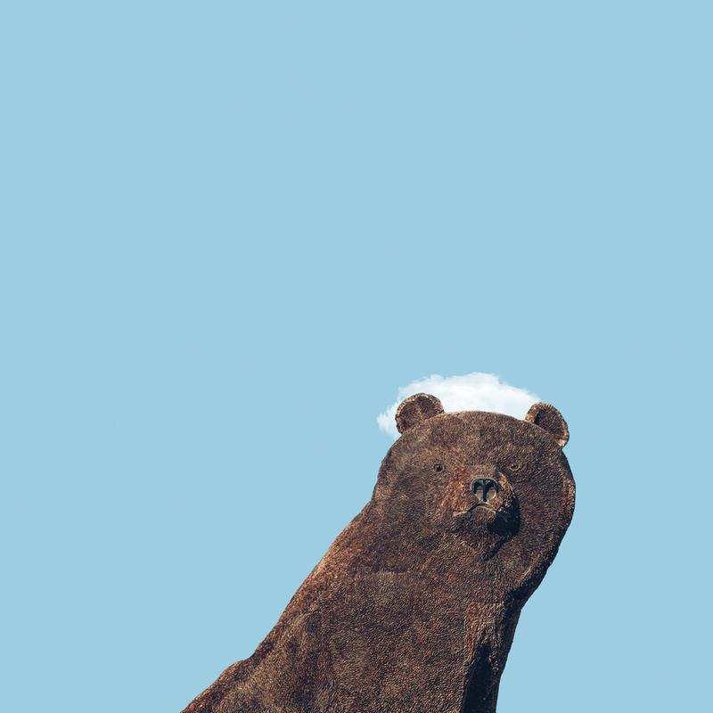 Bear -Leinwandbild