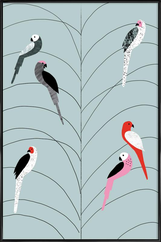 Tropicana - Birds on Branch Grey affiche encadrée