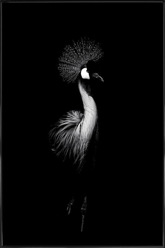 Dark Crane Framed Poster