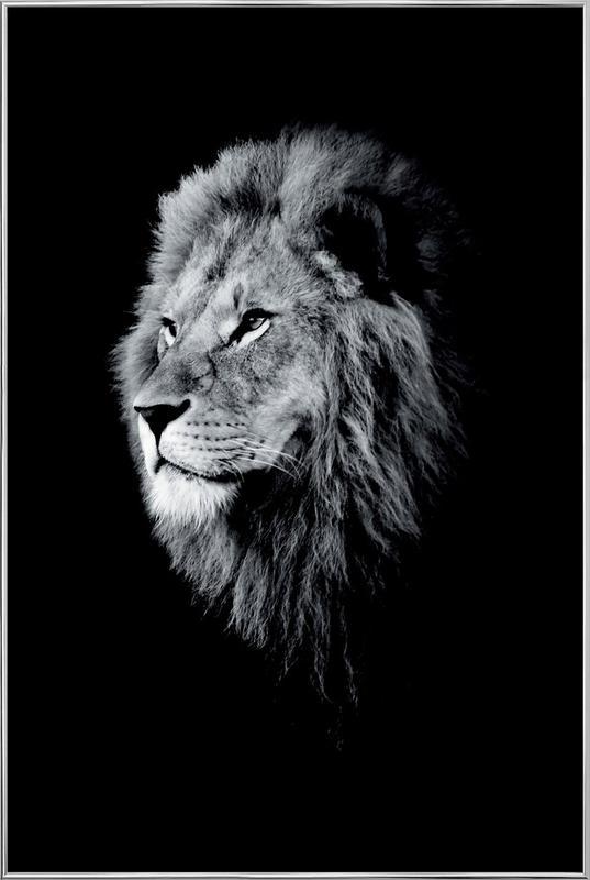 Dark Lion Head poster in aluminium lijst