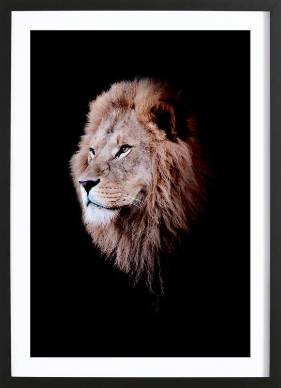 Dark Lion Head Colorized ingelijste print