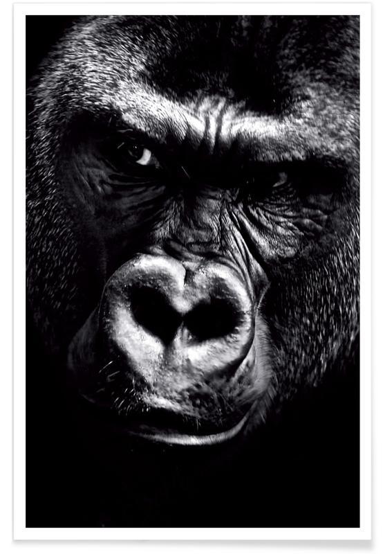 Dark Gorilla Poster
