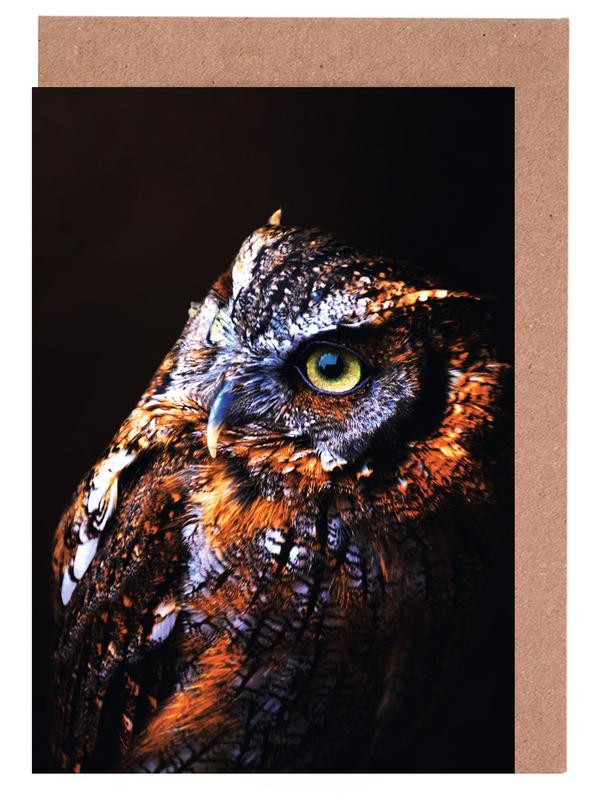 Owl Greeting Card Set