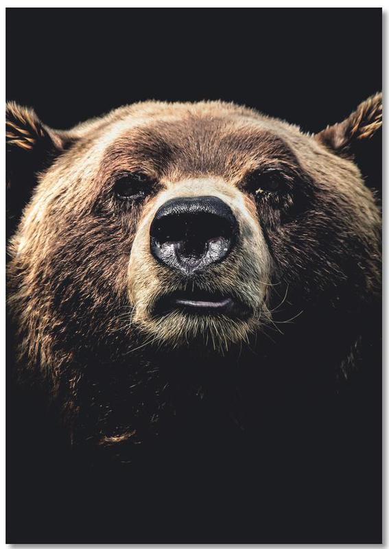 Dark Bear -Notizblock