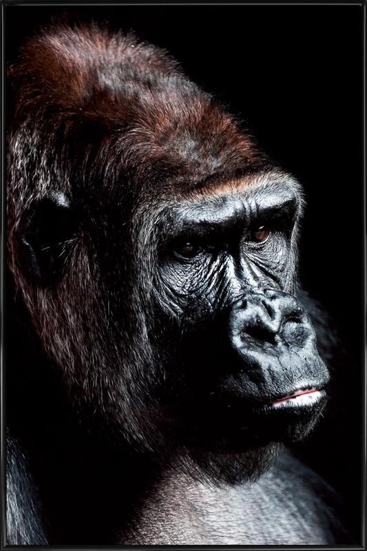 Dark Gorilla Framed Poster