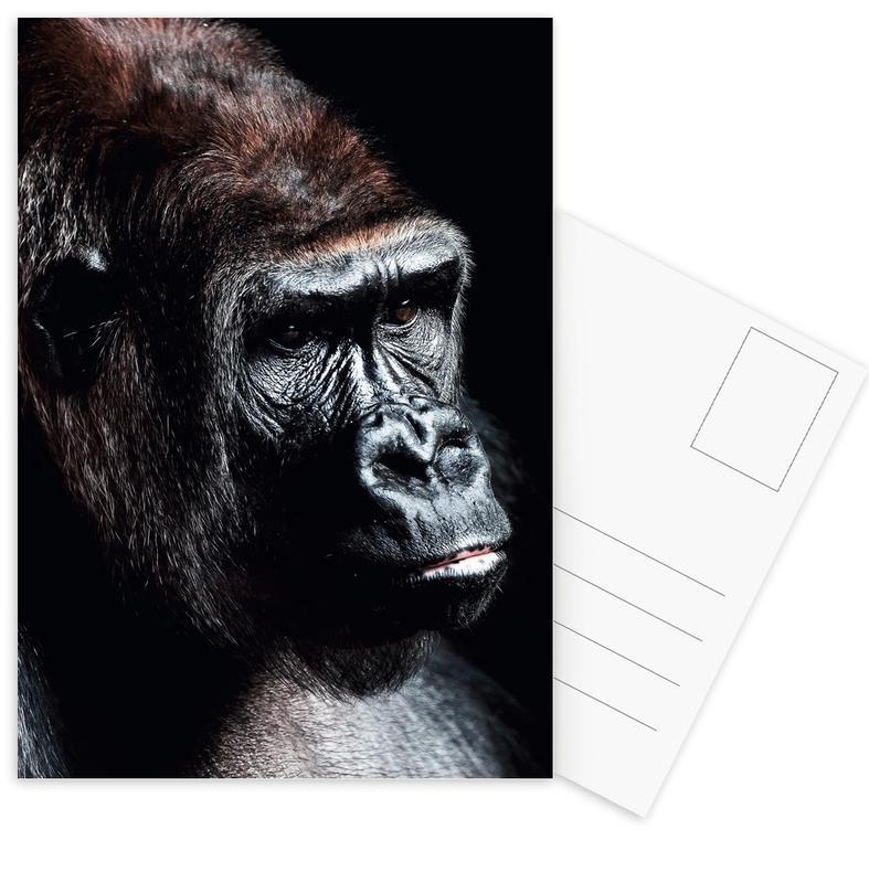 Dark Gorilla -Postkartenset