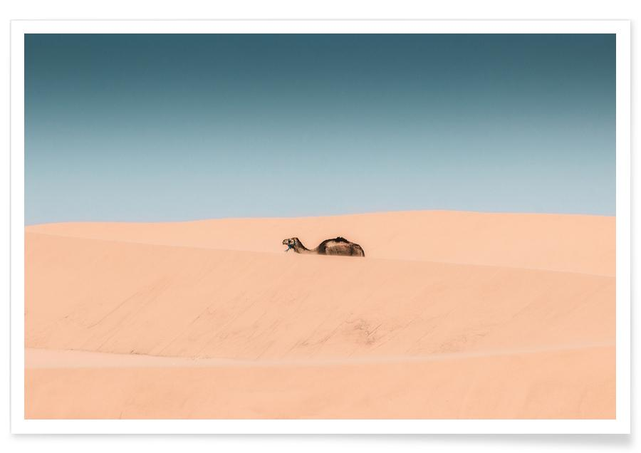 Lone Camel Poster