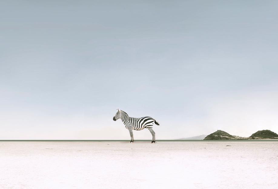 Lost in the Landscape by @ledart tableau en verre
